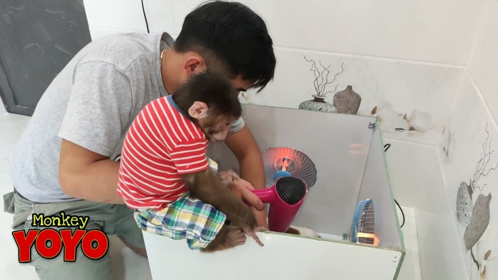 Dad makes a hair dryer for YoYo JR and his friends
