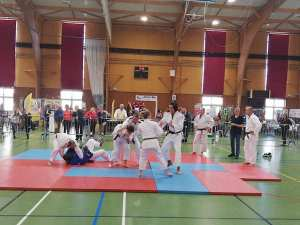Démonstration de judo, ju-jitsu au forum des associations
