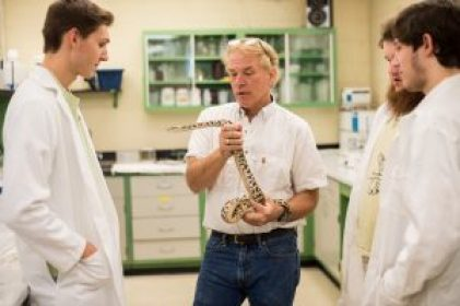 Dr. Secor holding a snake in a lab