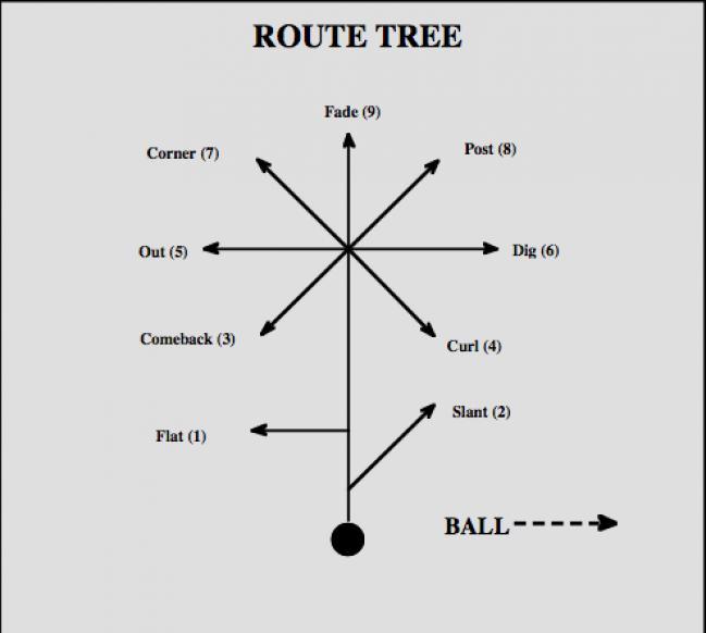 LECCIONES DE FOOTBALL: rutas y bloqueos de los receptores