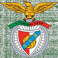 Badge/Flag Benfica