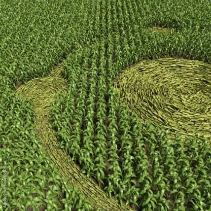 3d illustration of a crop circle close up Stock Photo | Adobe Stock