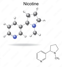 photo art print structural chemical formula and model of nicotine europosters [ 1000 x 1000 Pixel ]