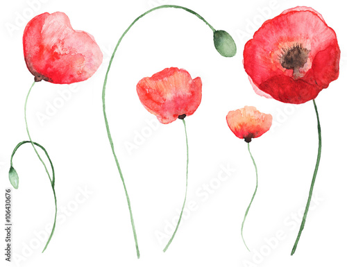 abstract watercolor flowers buy