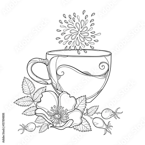 Vector cup of Rosehip herbal tea isolated on white
