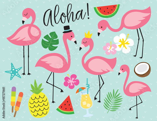 Cute Wallpapers Pineapple Watermelon Cute Flamingo With Tropical Summer Vector Illustration