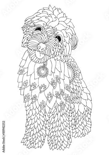 Golden doodle. Hand drawn dog. Sketch for anti-stress