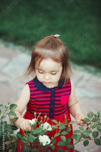 Cute Baby With Rose : Looks, White, Spray, Roses., Adorable, Little, Dress., Stock, Photo, Adobe