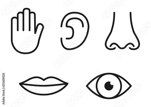 Outline icon set of five human senses: vision (eye), smell