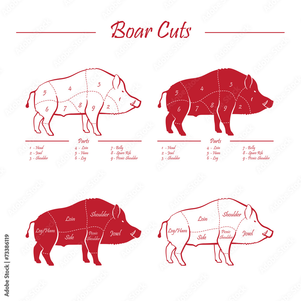 medium resolution of photo art print boar meat cut diagram elements red on white europosters