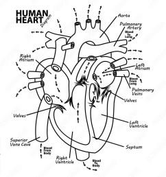 tattoo diagram [ 1000 x 1000 Pixel ]