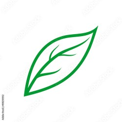leaf outline simple vector adobe similar vectors pic clipartmag royalty