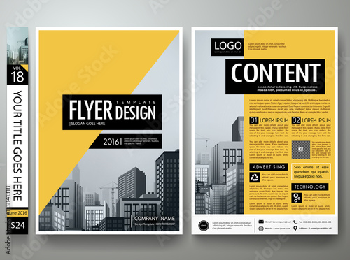 Flyers Design Template Vector Business Brochure Report