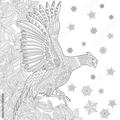 Zentangle stylized cartoon pheasant bird (cock, phoenix