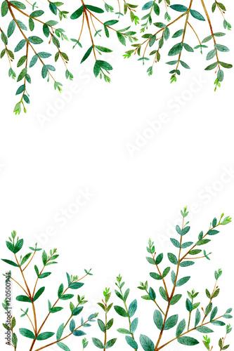 frame with eucalyptus branchesgreen floral border