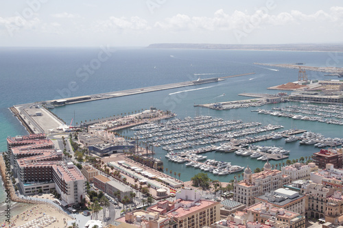 harbour of alicante buy