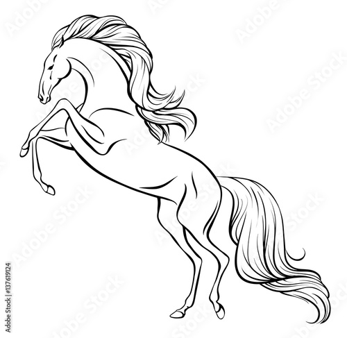 outline vector drawing of