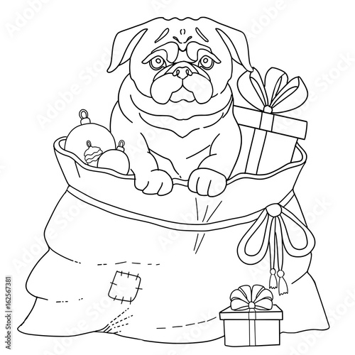 Dog Pug symbol 2018 new year. Page for adult coloring book
