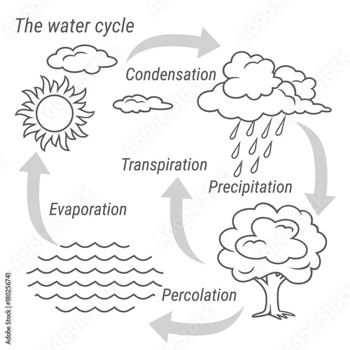 Water Cycle Black and white. Vector schematic