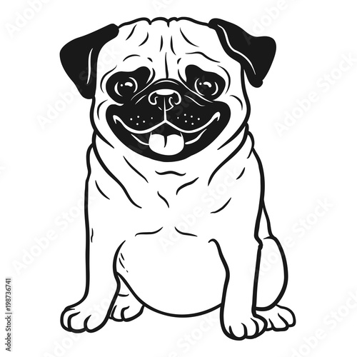 Pug dog black and white hand drawn cartoon portrait. Funny