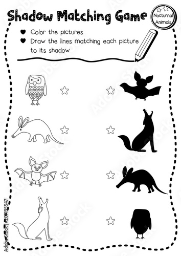 Shadow matching game of nocturnal animals for preschool
