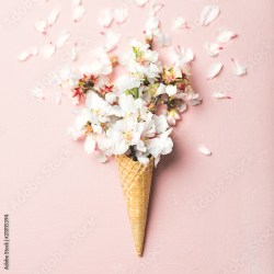 Flat lay of waffle sweet cone with white almond blossom flowers over pastel light pink background top view Spring or summer mood concept square crop Buy this stock photo and explore similar