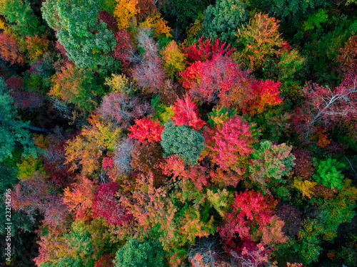 aerial drone view of
