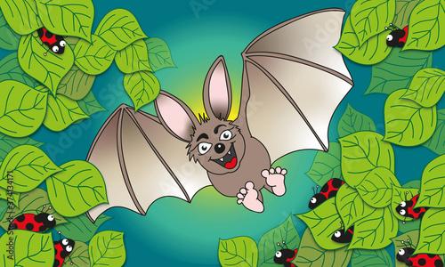 Süße lachende Fledermaus mit Käfern in der Nacht