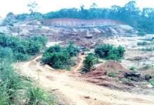 Photo of Illegal mining killing cocoa farms
