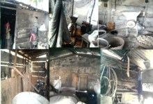 Photo of Contribution of Commercial Mills to Food Safety in Ghana