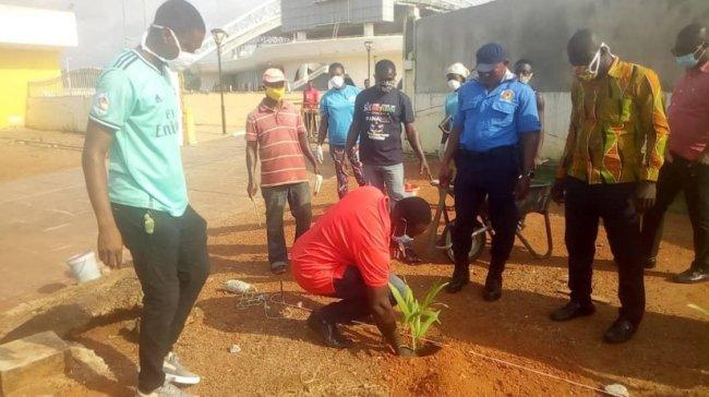 Marking Emancipation Day 2020: tree-planting at Assin Manso