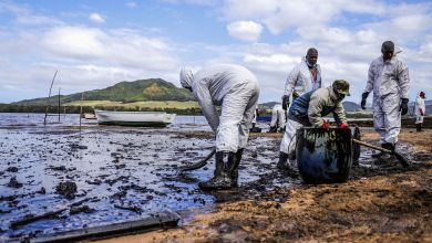 Cleaning up after Mauritius oil spill
