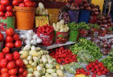 Food export