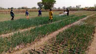 Farmers in North East Region