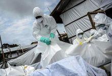 Coronavirus/covid-19 death toll