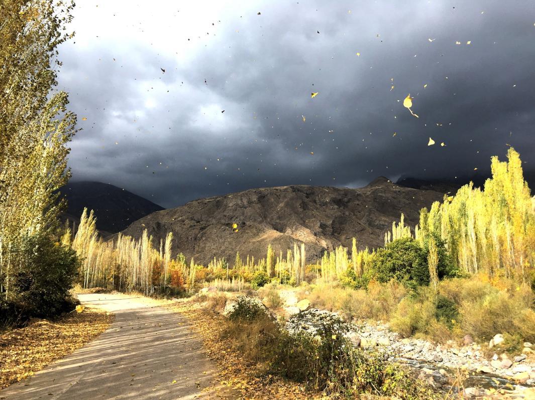 Nubes en Alamut