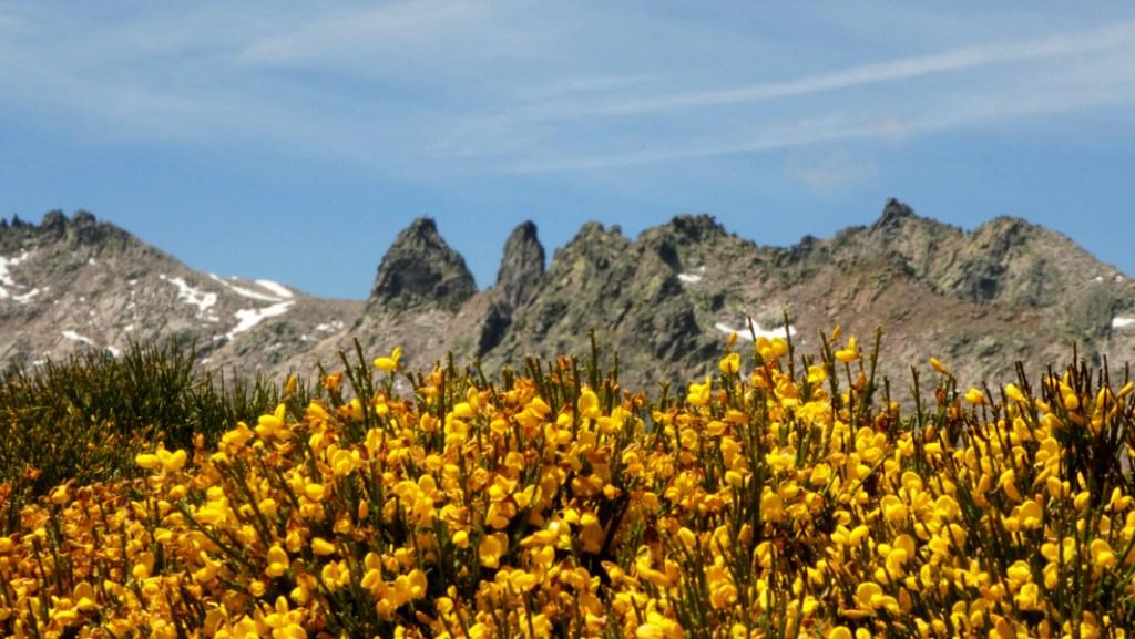 Sierra de Gredos - Hoyos del Espino - DESTACADA