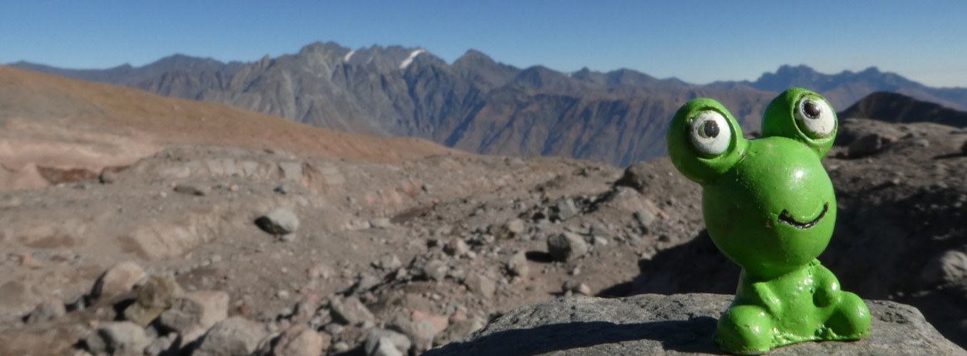 Rana en montaña - Carrusel