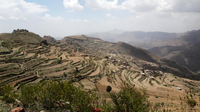 guerra en yemen - terrazas