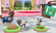 Petz 3DS, petits chiots.::. Ubisoft