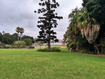 5-botanic-garden5