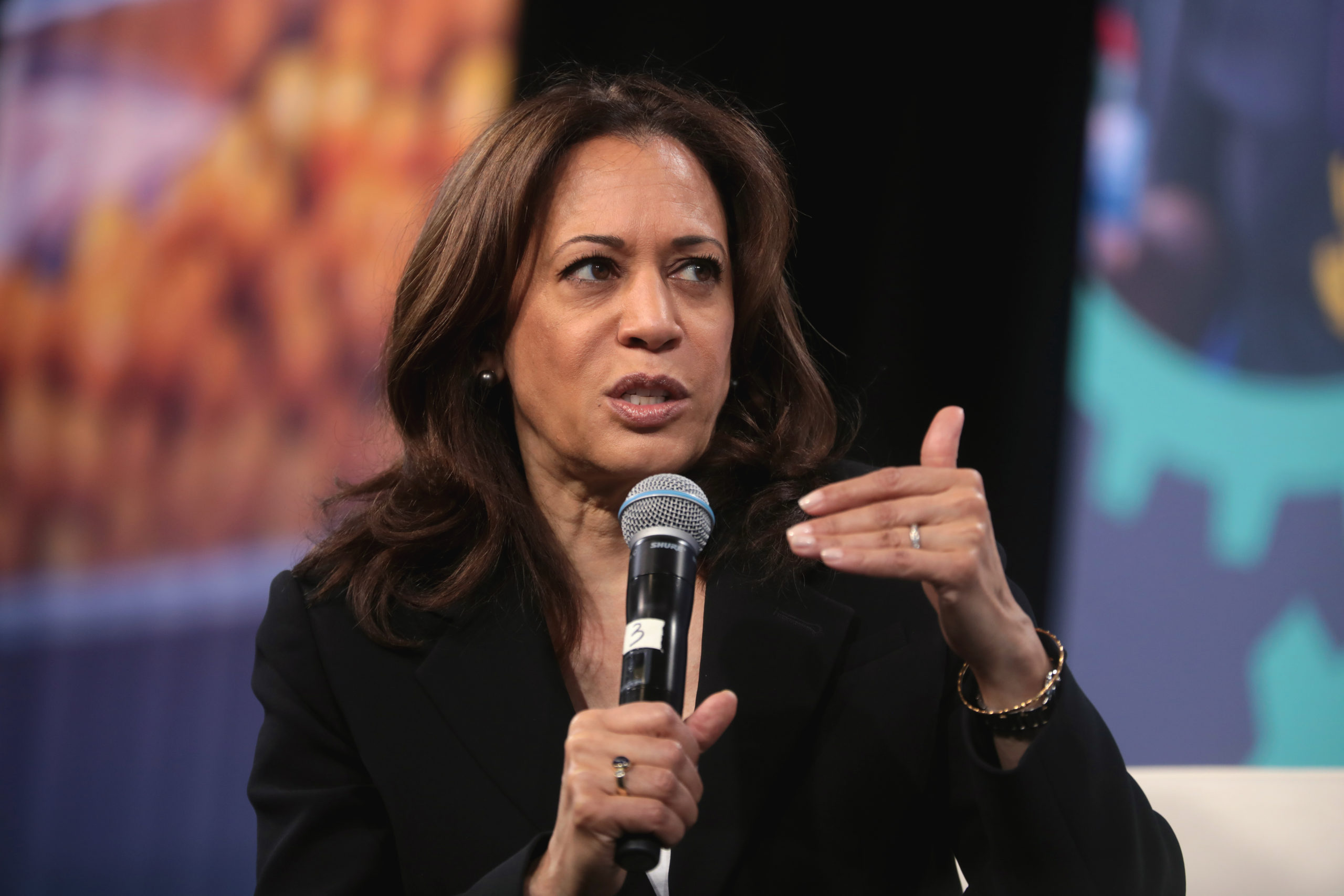 "After ""someone else,"" Kamala Harris, Andrew Yang are most favored for vice president"