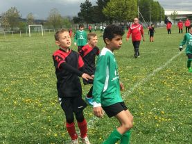 as andolsheim U 11 avenir vauban 00024