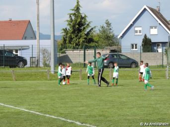 as andolsheim U 11 B Avenir Vauban 00012
