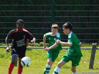as andolsheim U 13 A Vs Avenir Vauban 00017