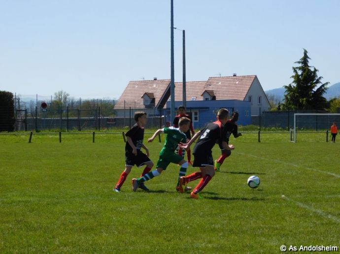 as andolsheim U 13 A Vs Avenir Vauban 00030