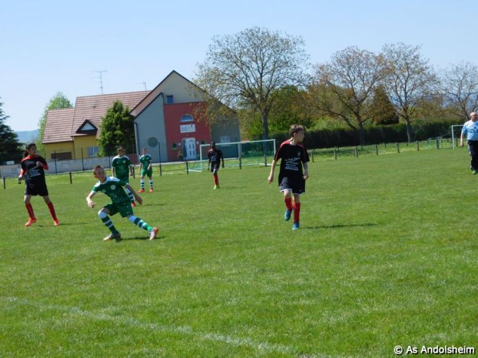 as andolsheim U 13 A Vs Avenir Vauban 00033