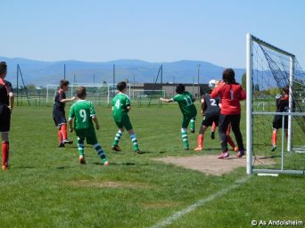 as andolsheim U 13 A Vs Avenir Vauban 00035