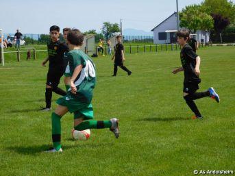 as andolsheim U 13 B vs Colmar Unifié 00015