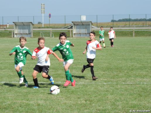 as-andolsheim-u-11-b-coupe-1-er-tour-7